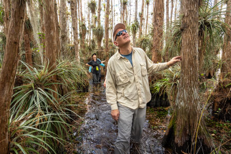 Garl Harrold, a long-time Everglades guide, takes a group through the sawgrass towards a cypress dome in the background. This one is called Movie Dome.  Everglades National Park.